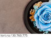 Купить «Close up of blue rose on yellow background», фото № 30760775, снято 21 мая 2019 г. (c) Pavel Biryukov / Фотобанк Лори