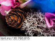 Купить «Close up of white dried coral flowers», фото № 30760815, снято 16 июля 2020 г. (c) Pavel Biryukov / Фотобанк Лори