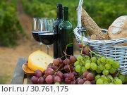 Купить «Red wine with basket», фото № 30761175, снято 25 мая 2019 г. (c) Яков Филимонов / Фотобанк Лори