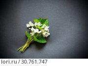 Купить «bouquet of beautiful garden white violets on a black», фото № 30761747, снято 15 мая 2019 г. (c) Peredniankina / Фотобанк Лори
