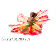 Купить «Dancer topless in artistic beautiful skirt», фото № 30780759, снято 29 апреля 2019 г. (c) Гурьянов Андрей / Фотобанк Лори