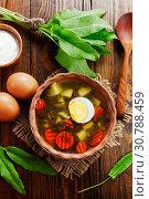 Купить «Щавелевые щи с яйцом», фото № 30788459, снято 18 мая 2019 г. (c) Надежда Мишкова / Фотобанк Лори