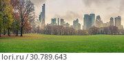 Купить «NY Central park at rainy day», фото № 30789643, снято 2 декабря 2015 г. (c) Sergey Borisov / Фотобанк Лори
