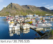 Harbour in Bolungarvik. The Westfjords (Vestfirdir) in Iceland. Europe, Northern Europe, Iceland. Стоковое фото, фотограф Martin Zwick / age Fotostock / Фотобанк Лори
