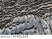 Купить «Basalt gorge of Garni in Armenia in the Kotayk region, near the village of Garni», фото № 30802619, снято 22 сентября 2018 г. (c) Наталья Волкова / Фотобанк Лори