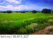 Купить «dramatic landscape with rain clouds», фото № 30811327, снято 12 мая 2016 г. (c) Яков Филимонов / Фотобанк Лори