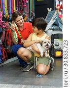 Купить «Positive family choosing accessories for dog», фото № 30833723, снято 22 августа 2018 г. (c) Яков Филимонов / Фотобанк Лори