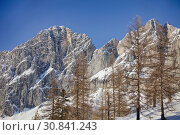 Купить «Rocky peaks of mountains in the snow and trees on against the blue sky in the Alps in Autria», фото № 30841243, снято 12 февраля 2015 г. (c) Яна Королёва / Фотобанк Лори
