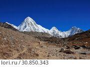 Купить «Snow capped mount Pumori and azure blue sky. Landscape near the Everest base camp. Trekking trail.», фото № 30850343, снято 4 июля 2020 г. (c) age Fotostock / Фотобанк Лори