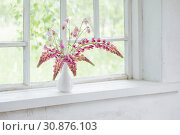 Купить «pink summer flowers in vase on white old windowsill», фото № 30876103, снято 30 мая 2019 г. (c) Майя Крученкова / Фотобанк Лори