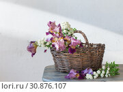 Купить «Irises in basket on wooden table against background of old white wall», фото № 30876107, снято 4 июня 2019 г. (c) Майя Крученкова / Фотобанк Лори