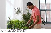 Купить «indian man taking care of houseplants at home», видеоролик № 30876171, снято 27 мая 2019 г. (c) Syda Productions / Фотобанк Лори