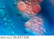 Купить «Colourful oil ink bubbles and drops. Abstract template mixed texture background. Wallpaper pattern.», фото № 30877035, снято 3 июня 2019 г. (c) bashta / Фотобанк Лори