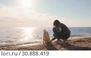 Купить «Funny shiba inu runs on the beach and digs the holes near the water with his female human friend slow motion», видеоролик № 30888419, снято 27 мая 2020 г. (c) Denis Mishchenko / Фотобанк Лори