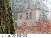 Купить «Haus im nebligen Wald stehend», фото № 30889083, снято 18 июля 2019 г. (c) age Fotostock / Фотобанк Лори