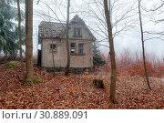 Купить «Haus im nebligen Wald stehend», фото № 30889091, снято 18 июля 2019 г. (c) age Fotostock / Фотобанк Лори