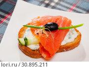 Купить «Salmon and cucumber on toasted baguette with cream sauce», фото № 30895211, снято 24 августа 2019 г. (c) Яков Филимонов / Фотобанк Лори