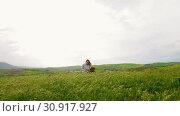 Купить «A young attractive woman sits in the middle of a green meadow», видеоролик № 30917927, снято 5 апреля 2020 г. (c) Константин Шишкин / Фотобанк Лори