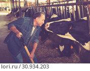 Купить «Male farmer who is feeding beasts», фото № 30934203, снято 24 октября 2017 г. (c) Яков Филимонов / Фотобанк Лори