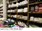 Купить «different fabric bolts exposed on shelves», фото № 30934367, снято 2 марта 2018 г. (c) Яков Филимонов / Фотобанк Лори