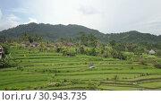 Купить «Aero view from drone on rice terraces of mountain and house of farmers. Bali, Indonesiali,», видеоролик № 30943735, снято 9 июня 2009 г. (c) Куликов Константин / Фотобанк Лори