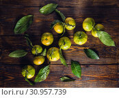 Купить «Tangerines with Leaves on Wooden Surface, View from Above.», фото № 30957739, снято 21 октября 2016 г. (c) easy Fotostock / Фотобанк Лори