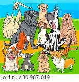 Cartoon Illustration of Purebred Dogs Animal Characters Group. Стоковое фото, фотограф Zoonar.com/Igor Zakowski / easy Fotostock / Фотобанк Лори