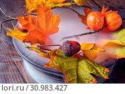 Купить «Autumn leaves in the mist», фото № 30983427, снято 18 июля 2019 г. (c) easy Fotostock / Фотобанк Лори