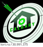 Купить «Calgary Real Estate Target Shows Property For Sale Or Rent In Alberta. Investment Agents Or Brokers Symbol 3d Illustration», фото № 30991375, снято 20 ноября 2012 г. (c) easy Fotostock / Фотобанк Лори