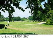 Английский сад (нем. Englischer Garten) или Английский парк в солнечный летний день. Мюнхен. Германия (2019 год). Редакционное фото, фотограф E. O. / Фотобанк Лори