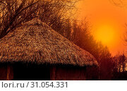 Купить «Rooftop of a primitive home with a straw roof at sunset, nature scenery, beautiful landscape background», фото № 31054331, снято 7 июля 2020 г. (c) easy Fotostock / Фотобанк Лори