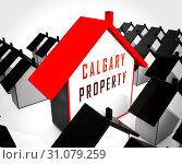 Купить «Calgary Real Estate Home Shows Property For Sale Or Rent In Alberta. Investment Agents Or Brokers Symbol 3d Illustration», фото № 31079259, снято 3 июля 2013 г. (c) easy Fotostock / Фотобанк Лори