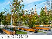 Вид на московский кремль из  парка Зарядье. Москва (2018 год). Редакционное фото, фотограф Александр Щепин / Фотобанк Лори