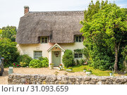 Characterful thatched cottages in the village of West Lulworth, Dorset, England. UK. Стоковое фото, фотограф Andrew Michael / age Fotostock / Фотобанк Лори