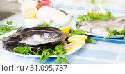 Купить «freshness eel and vegetables on the plate», фото № 31095787, снято 30 марта 2020 г. (c) Татьяна Яцевич / Фотобанк Лори