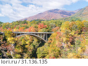 Купить «Naruko Gorge valley with rail tunnel in Miyagi Tohoku Japan», фото № 31136135, снято 26 октября 2017 г. (c) easy Fotostock / Фотобанк Лори