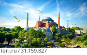 Hagia Sophia in summer Istanbul at sunny day, Turkey. Стоковое фото, фотограф Givaga / easy Fotostock / Фотобанк Лори