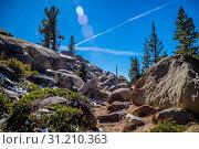 Scenic view of the landscape at Tuolumne Grove Trailhead in Yosemite National Park. Стоковое фото, фотограф ImgesByCheri.com / easy Fotostock / Фотобанк Лори