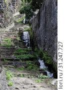 Купить «Levada near old stairs from stone on the island madeira», фото № 31247727, снято 23 марта 2016 г. (c) easy Fotostock / Фотобанк Лори
