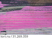 Купить «Abstract aquarelle hand drawn art on white background, Watercolor grunge texture backdrop», фото № 31269359, снято 6 декабря 2017 г. (c) easy Fotostock / Фотобанк Лори