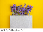 Composition of lavender flowers and gray envelope of paper on a yellow-orange background. Flat lay. Copy space. Стоковое фото, фотограф Tetiana Chugunova / Фотобанк Лори