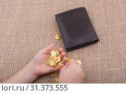Купить «Wallet and plenty of fake gold coins in hnad», фото № 31373555, снято 15 октября 2017 г. (c) easy Fotostock / Фотобанк Лори
