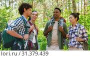 Купить «friends with backpacks on hike talking in forest», видеоролик № 31379439, снято 29 июня 2019 г. (c) Syda Productions / Фотобанк Лори