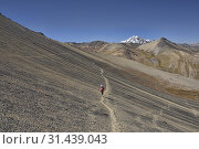 Купить «Trekking towards Huayna Potosi on the Cordillera Real Traverse, Bolivia.», фото № 31439043, снято 7 июня 2019 г. (c) age Fotostock / Фотобанк Лори