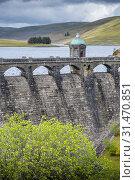 Купить «Craig Goch reservoir at Elan Valley, Powys, Wales.», фото № 31470851, снято 4 апреля 2020 г. (c) age Fotostock / Фотобанк Лори