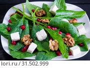 Купить «Spinach salad with nuts and apples served on table», фото № 31502999, снято 14 ноября 2017 г. (c) Elnur / Фотобанк Лори