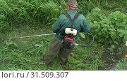 Мужчина косит траву ручной бензиновой газонокосилкой. Вид сверху (2019 год). Редакционное видео, видеограф А. А. Пирагис / Фотобанк Лори