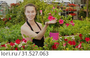 Female florist cultivating Dipladenia (Mandevilla) in greenhouse. Стоковое видео, видеограф Яков Филимонов / Фотобанк Лори