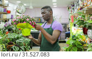 Купить «Portrait of skilled African-American man florist arranging flowers in pots at flower shop», видеоролик № 31527083, снято 26 марта 2019 г. (c) Яков Филимонов / Фотобанк Лори