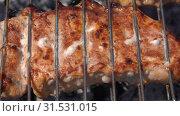 Купить «Мясо жарится на решетке на углях», видеоролик № 31531015, снято 15 июля 2019 г. (c) А. А. Пирагис / Фотобанк Лори